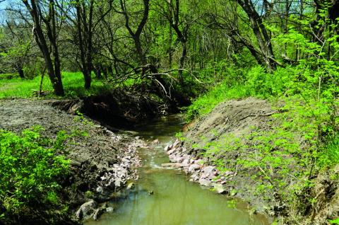 Lincoln's Beal Slough