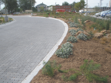 pervious pavers and bioswale