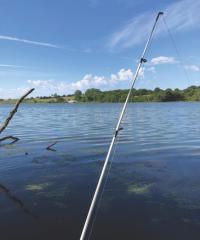 fishing pole on a lake